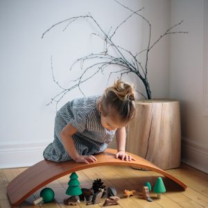 Balance/Wobble boards